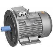 ONP071-C2-001-1-3020; Электродвигатель асинхронный однофазный АИР2Е 71C2 220В 1.1кВт 3000об/мин 2081