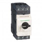 GV3 Автоматический выключатель с регулируемой тепловой защитой (48-65А); GV3P65