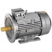AIS132-B4-009-2-1520; Электродвигатель трехфазный АИС 132MB4 380В 9.2кВт 1500об/мин 2081 DRIVE